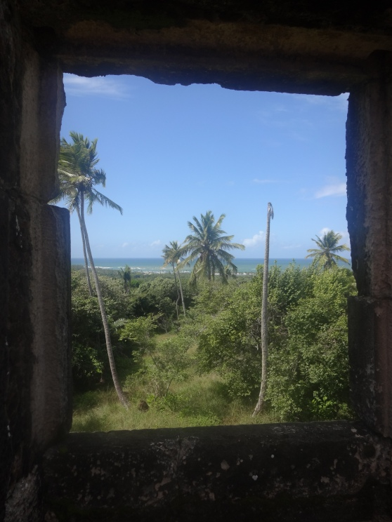 A window into paradise